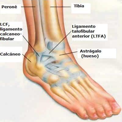 dolor lateral interno del pie
