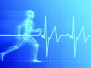 Ejercicio física y respuesta coroazón